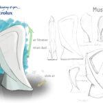 Must Dust Schizzi_ Bruno Testa_ISIA Pn_Product2 prof.M.Datti_AA 2012 2013_Electrolux