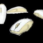 scan disegni polyaper_15b